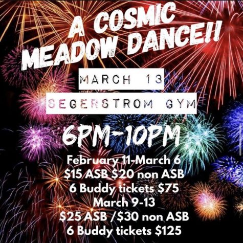 A poster for the Cosmic Meadow Dance.
