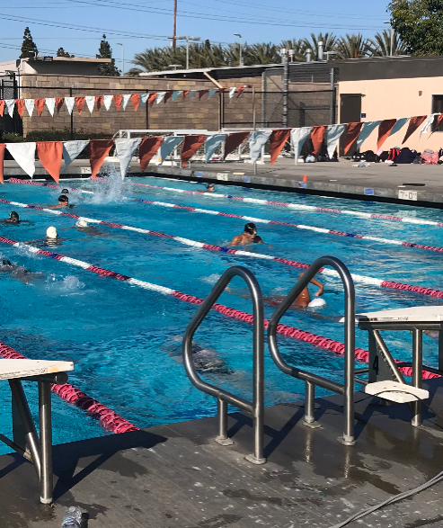 Segerstrom's swim team warms up in the water before the meet begins.