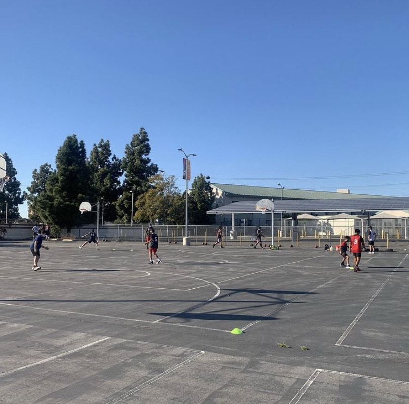 Sports Are Back At Segerstrom