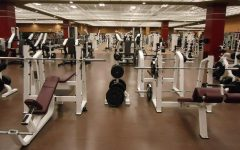 Weight racks are found in most gyms and can be used for upper and lower body workouts. Photo Courtesy: Pixabay